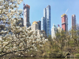 From left to right, 111 West 57, One57, Central Park Tower, and 220 Central Park South, image by Michael Young